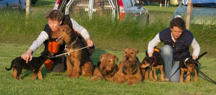 von links nach rechts: Carlsson, Doro, Bolle, Alex (PJ), August (Kalle), Cleine Süße (Bobby), Christiane und Calle